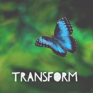 Transform - Extended Lifestyle Mentorship Program