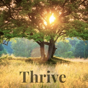 Thrive - Mentorship Program